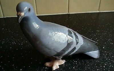Copenhagen B&G pigeon