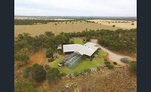 Lot 2 McPherson Road Beelbangera NSW 2680 - Offer And Negotiate Beelbangera Griffith Area Preview