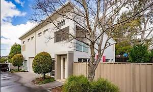 2 Bedrooms to rent at Kingsgrove - Bright beautiful townhouse Kingsgrove Canterbury Area Preview
