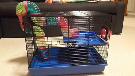 Mouse cages
