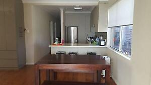 Rent my bed in double room Randwick Eastern Suburbs Preview