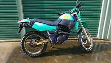 1989 Yamaha XT 600 Last of the kick start Strathdickie Whitsundays Area Preview