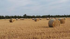 Oaten hay round bales Wilmington Mount Remarkable Area Preview
