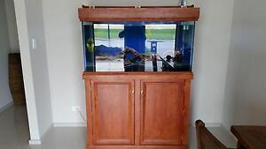 Fish tank for sale Direk Salisbury Area Preview