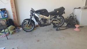 1993 Yamaha YZF750R S/P Jimboomba Logan Area Preview