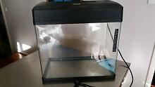Fish tank aquarium with lid Marino Marion Area Preview