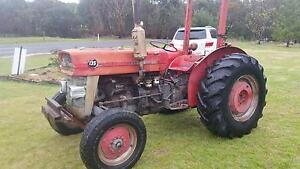 Massey Ferguson 135 Tractor Glen Aplin Southern Downs Preview