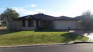 Room for rent West Busselton Busselton Area Preview