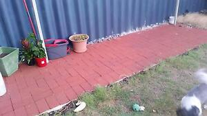 Brick Pavers - red colour Shoalwater Rockingham Area Preview