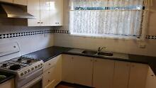 Clean and good size  room Seven Hills Blacktown Area Preview
