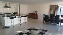 Beautiful NEW home wanting an amazing flatmate Eglinton Wanneroo Area Preview