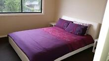 I am looking for a clean and tidy and responsible person. South Penrith Penrith Area Preview