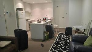 Double room for rent near Sydney Olympic park Homebush West Strathfield Area Preview