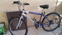 Purple/Grey bicycle Nollamara Stirling Area Preview