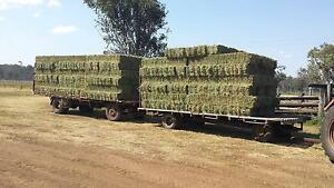 Lucerne Hay Sale Booie South Burnett Area Preview