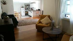 1 x Room for Rent in Spacious 2 Bedroom House in Marrickville Marrickville Marrickville Area Preview