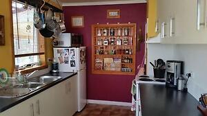 3 Bedroom home Devonport Devonport Area Preview