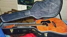 Washburn Guitar (Acoustic) Armidale City Preview