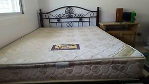iron  with wood bed Punchbowl Canterbury Area Preview