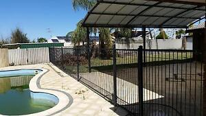 Pool Fencing and Gates Bateman Melville Area Preview