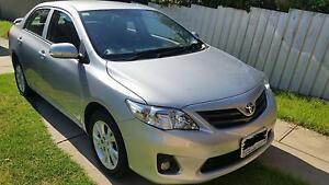 Late 2012 Toyota Corolla Sedan! Low Mileage! Rowville Knox Area Preview