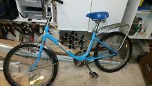 Malvern Star - Family Star - 35 year old bike Mortdale Hurstville Area Preview