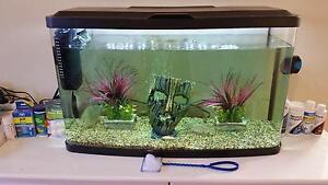 Startup Fish Tank Set (Medium Size) Coomera Gold Coast North Preview