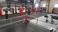 FREE 1st class @ Team Turner Boxing Gym St Agnes Tea Tree Gully Area Preview