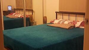 Room for Rent Mango Hill Pine Rivers Area Preview