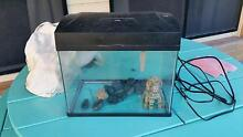 FREE Aquarium comes with pump and some accessories THIS WEEK ONLY East Gosford Gosford Area Preview