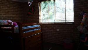 Timber Loft Bed with extras - desk, 3 x drawers & bookcases!! Bundall Gold Coast City Preview