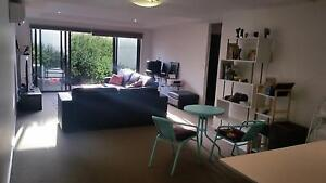Room in Spacious modern ground floor apartment with a large deck Carnegie Glen Eira Area Preview