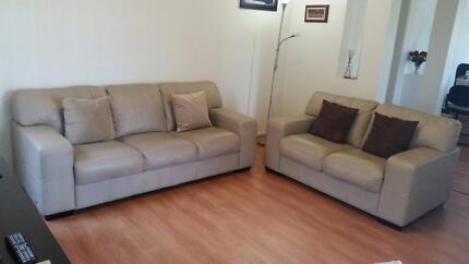 Sofa 3 + 2 S  NickScali Auburn Auburn Area Preview