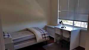 Large, sunny rooms at North Ryde near Uni, Train, Bus North Ryde Ryde Area Preview