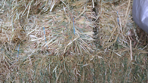 Oaten hay and lucerne/oaten mix hay Riddells Creek Macedon Ranges Preview