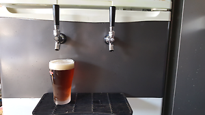 Twin tap kegerator  $600 firm. Berkeley Vale Wyong Area Preview