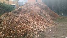 Mulch chip wood Kentish Area Preview