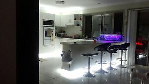House for rent at Rochedale south $720 a week. Rochedale South Brisbane South East Preview