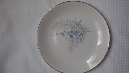 Vintage Plate Swinnertons Staffordshire Nestor Vellum England