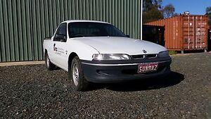 2000 Holden Commodore Ute Echuca Campaspe Area Preview