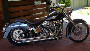 Harley Davidson Complete and Customized Softail Deluxe, FLSTN Forrestfield Kalamunda Area Preview