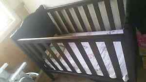 Cot for sale. Hallam Casey Area Preview