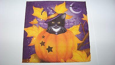 en Cat Halloween Katze im Kürbis Napkins (Kürbisse Halloween-katze)