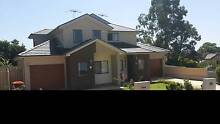 New Duplex_master room for rent_Westmead Westmead Parramatta Area Preview