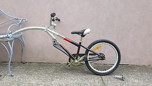 Tagalong Bike Hamilton South Newcastle Area Preview
