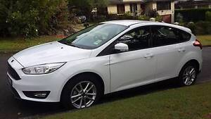 2016 Ford Focus Hatchback North Turramurra Ku-ring-gai Area Preview