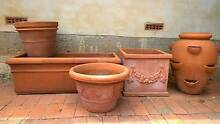 Imported classic Italian terracotta pots - ideal for topiaries Kensington South Perth Area Preview