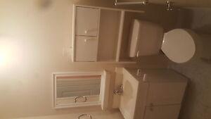 For rent 1 bedroom separate entrance 199 grulke st Kitchener Kitchener / Waterloo Kitchener Area image 6