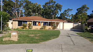 Fully renovated large 4×2 with pool for rent in High Wycombe High Wycombe Kalamunda Area Preview