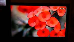BEAUTIFUL 40INCH SONY BRAVIA FOR SALE Browns Plains Logan Area Preview